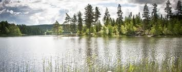 Schools in Varmland | Best Boarding Schools