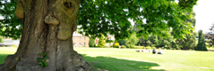 Oswestry School: Oswestry, Shropshire, UK | Best Boarding Schools