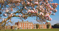 Orwell Park School: Ipswich, Suffolk, UK | Best Boarding Schools